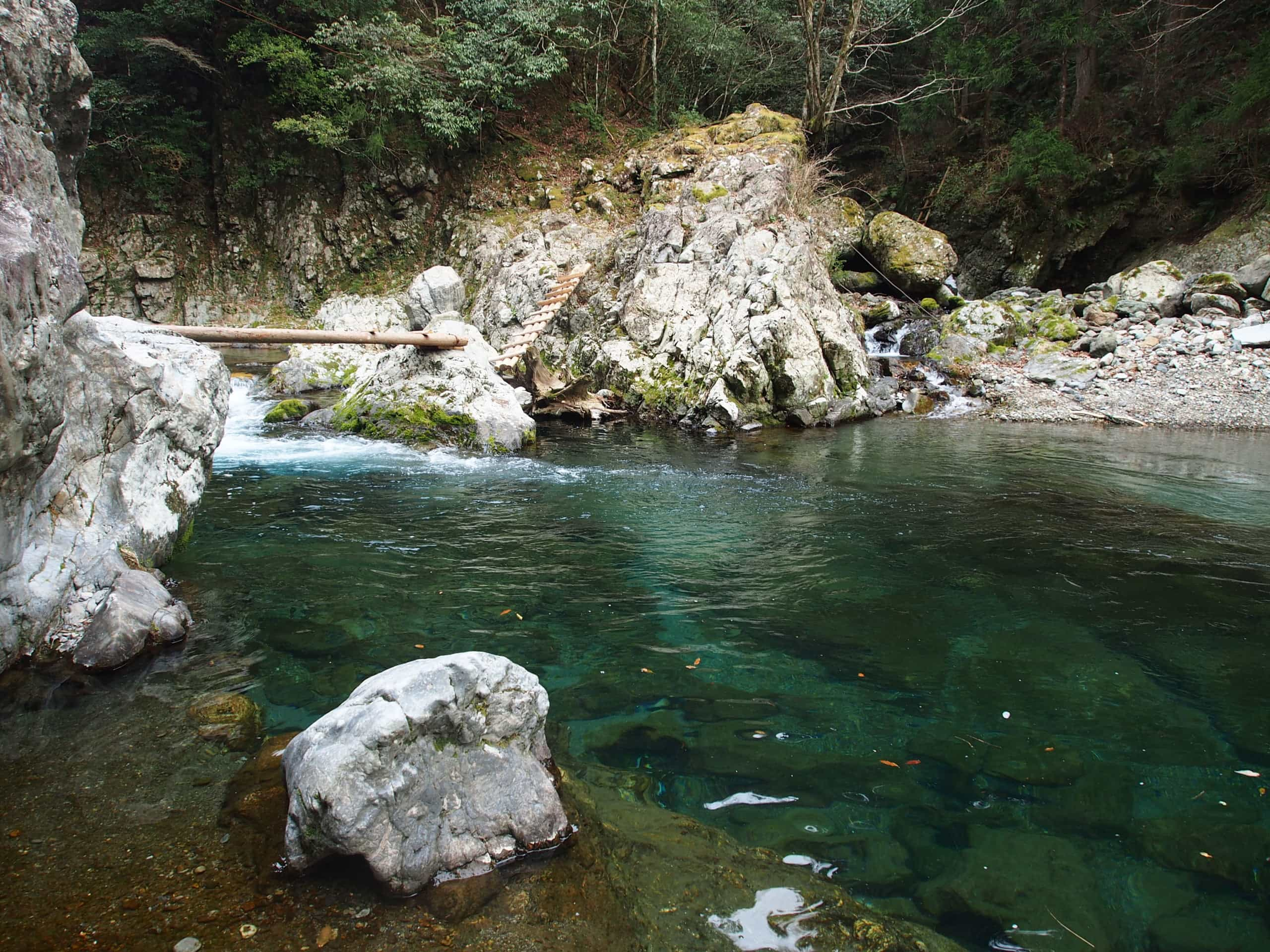 中奥川ヤマメ渓流釣り