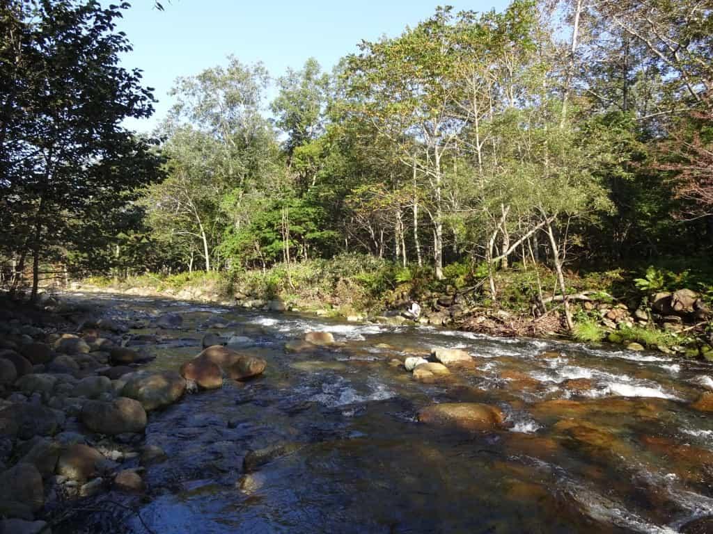 西広尾川の景観