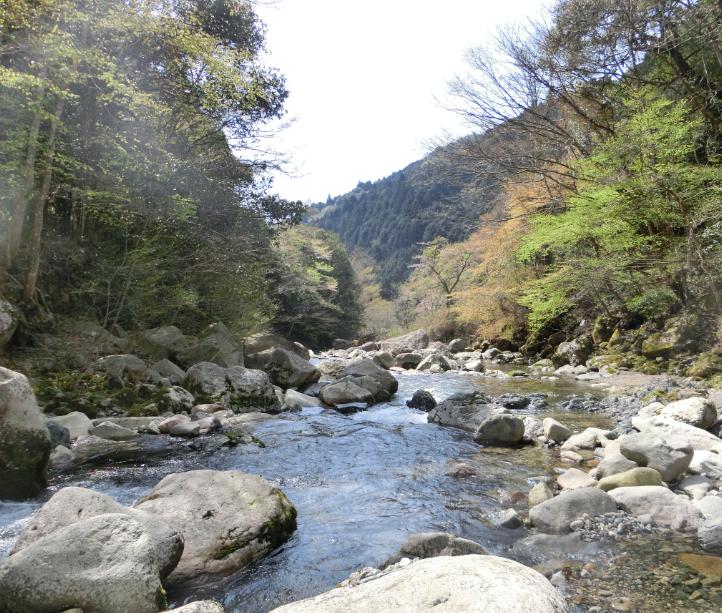 錦川の木谷川(木谷峡谷)