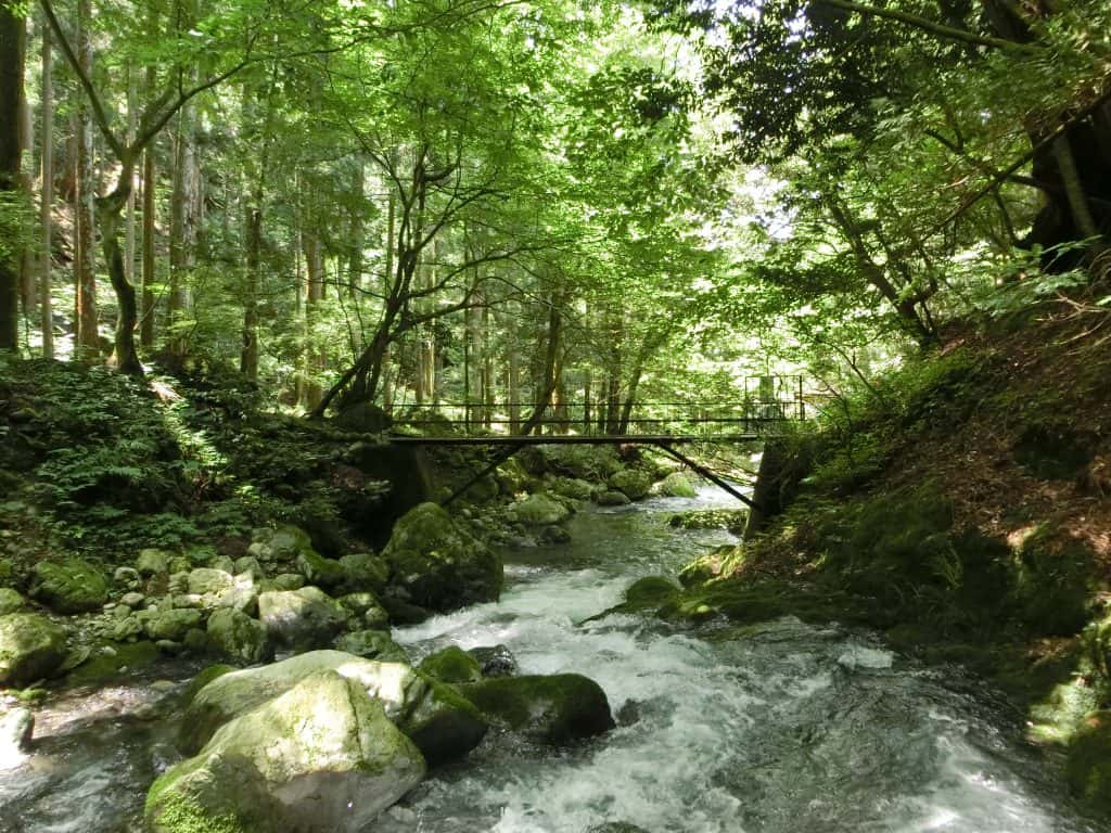 河内風穴で渓流釣り