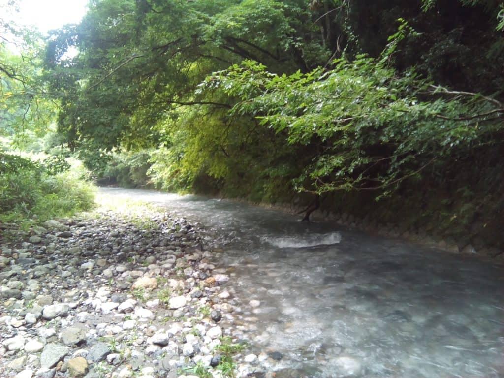 滋賀県湖東湖北長浜姉川支流水谷