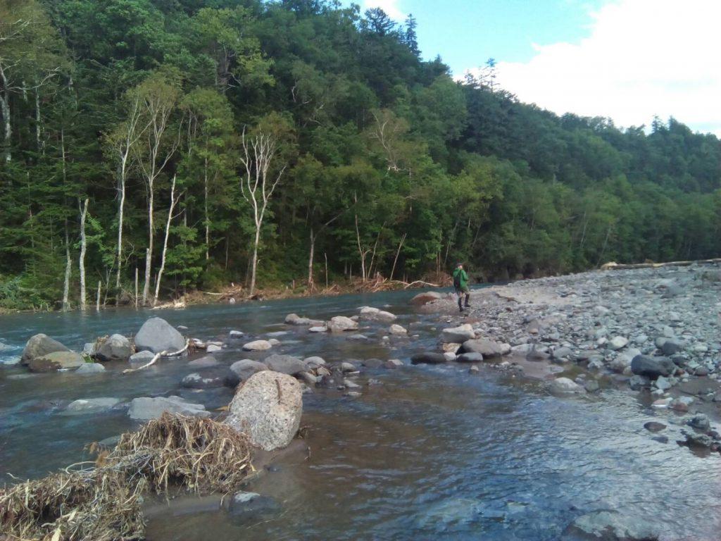 白ひげの滝の下流