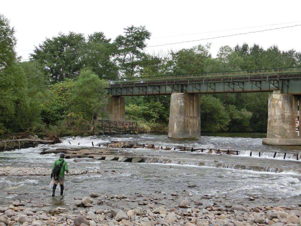 天塩川水系ペンケ仁宇布川(ペンケニウブ)ニジマス釣り