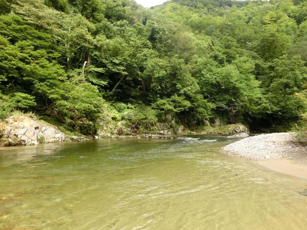 秋田雄物川皆瀬川イワナ渓流釣り