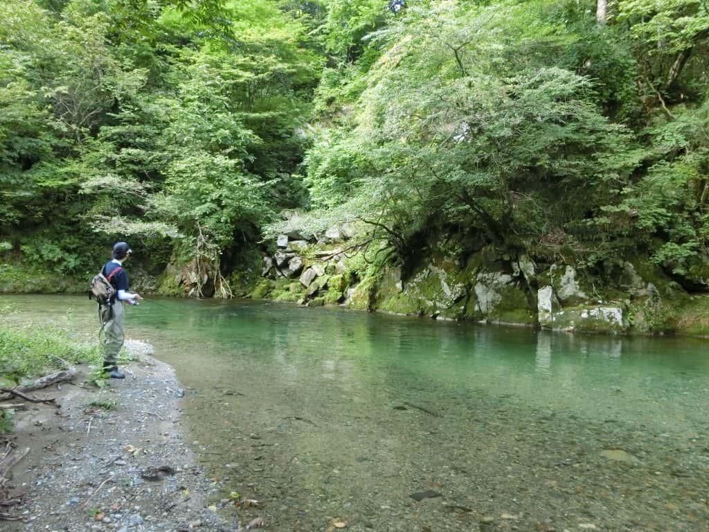 和賀川支流南元内川渓流釣り