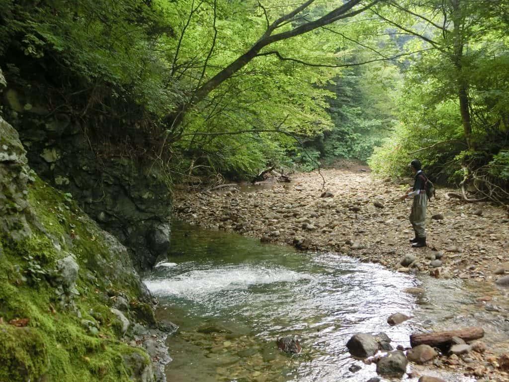北上川支流葛丸川渓流釣り