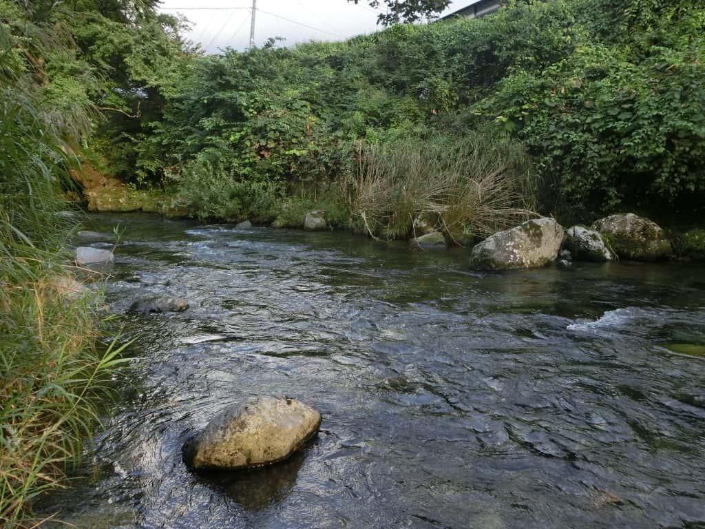 北上川支流稗貫川岳川ヤマメ渓流釣り
