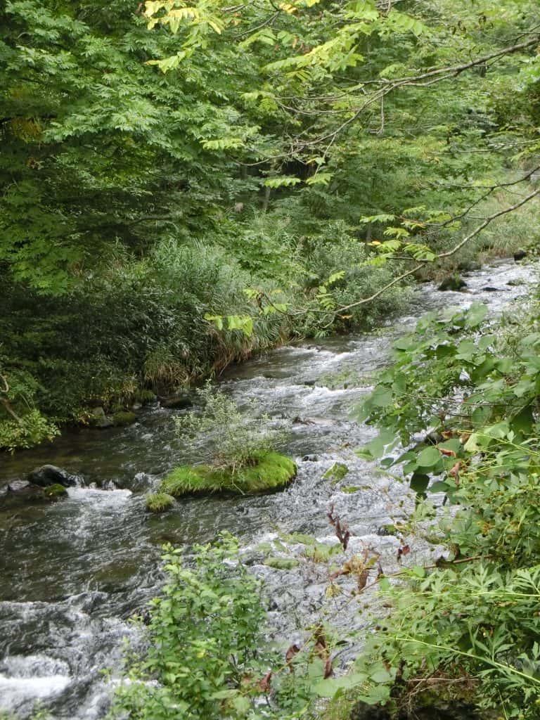 達曽部川渓流釣り