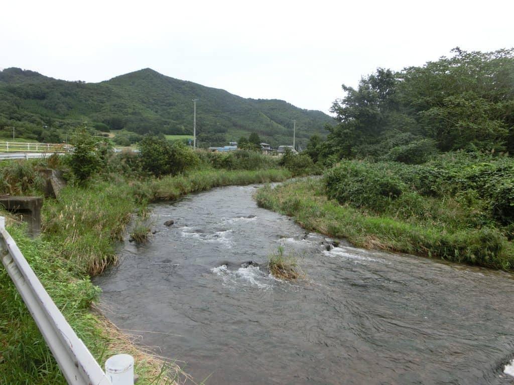 猿ヶ石川小友川ヤマメ渓流釣り
