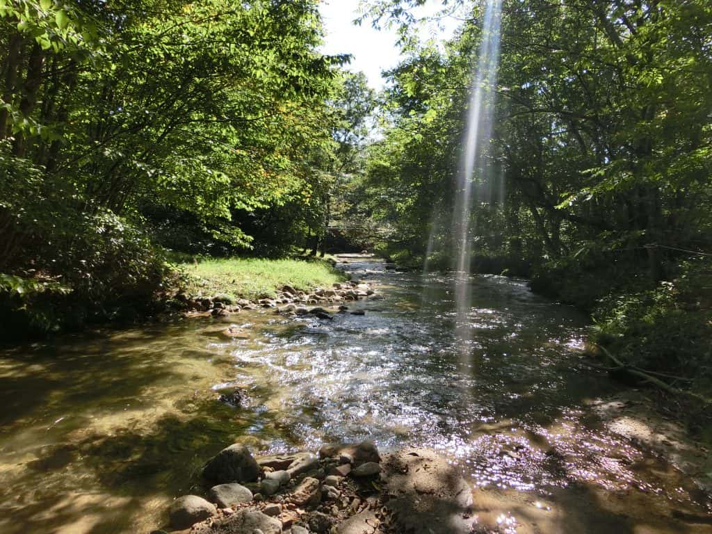 猿ヶ石川わらべ近くイワナ渓流釣り