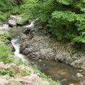 木曽川支流の岩村川渓流釣り