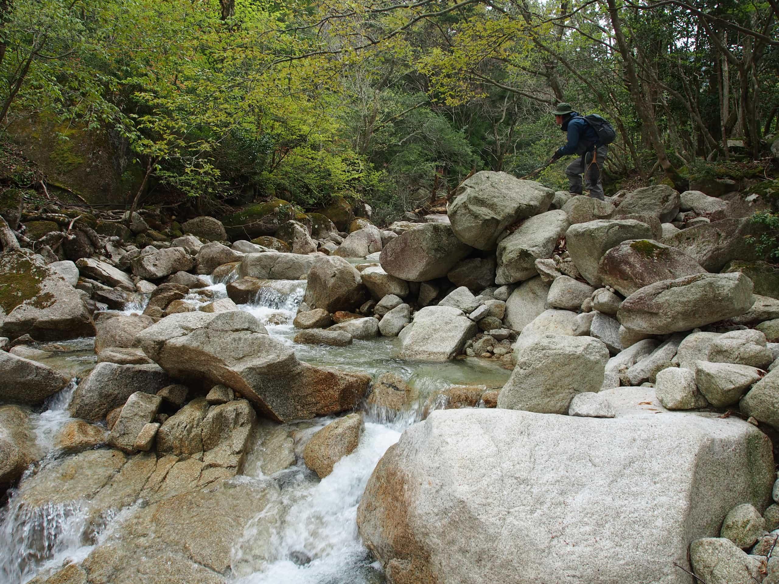愛知川八風谷イワナ・ヤマメ渓流釣り