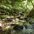 飯塚山口のヤマメ渓流釣り