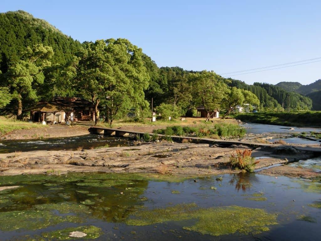 緒方川中島公園アマゴ渓流釣り