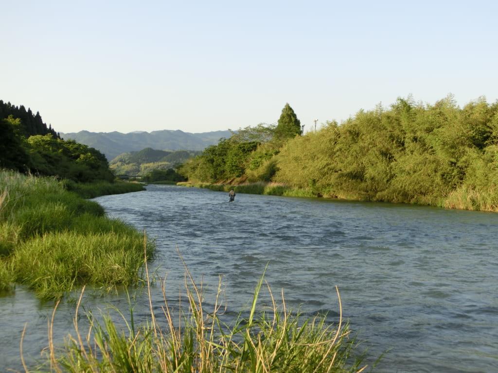 万江川ヤマメ渓流釣り