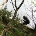 大鹿村三峰川渓流釣り