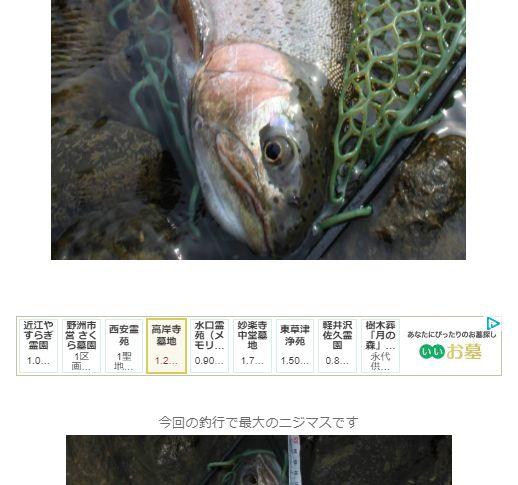 釣りブログのアドセンス