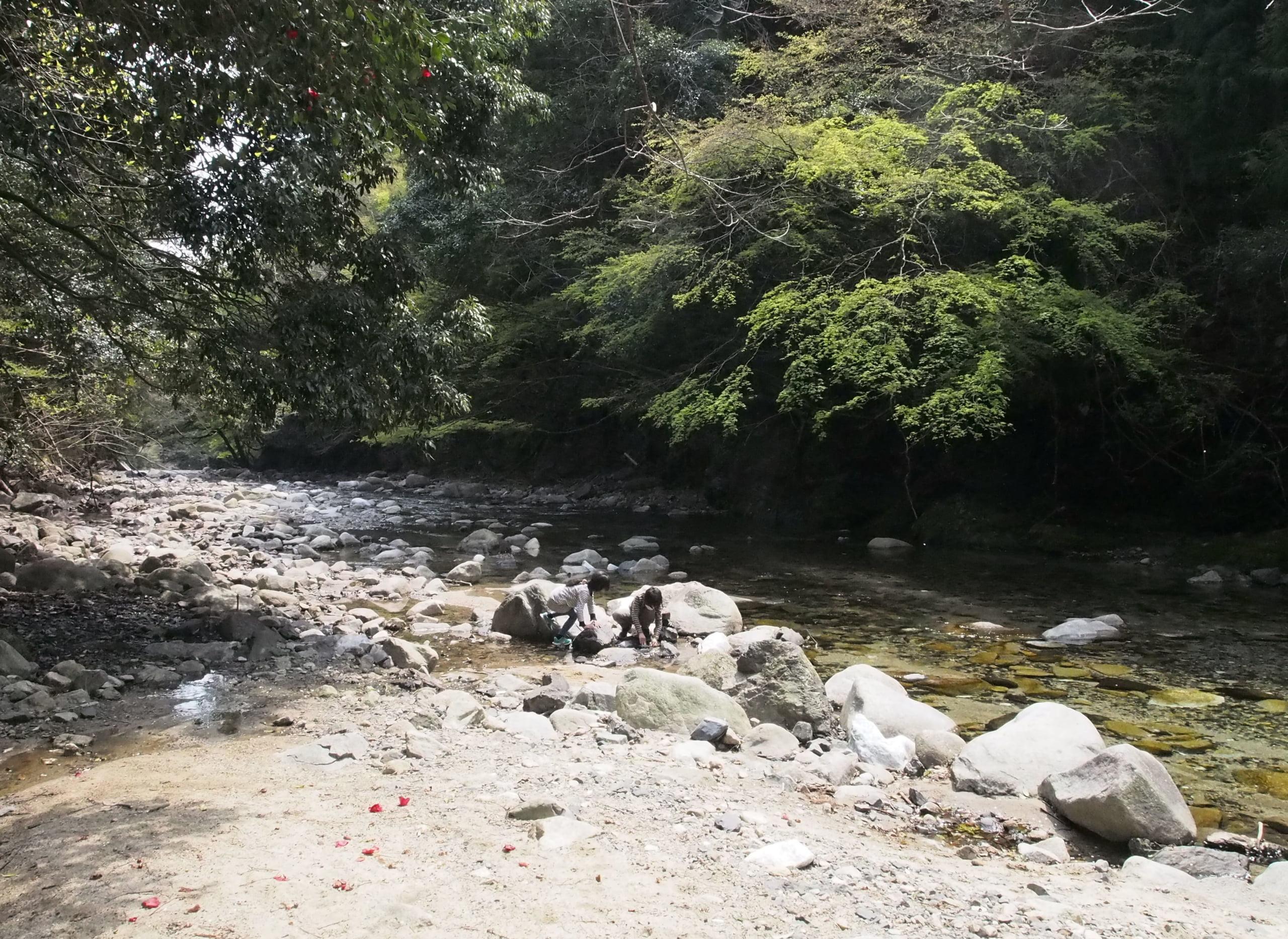 鈴鹿川御弊川ヤマメ渓流釣り