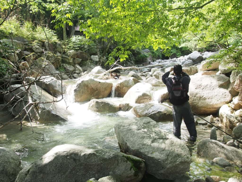 関西イワナ渓流釣り