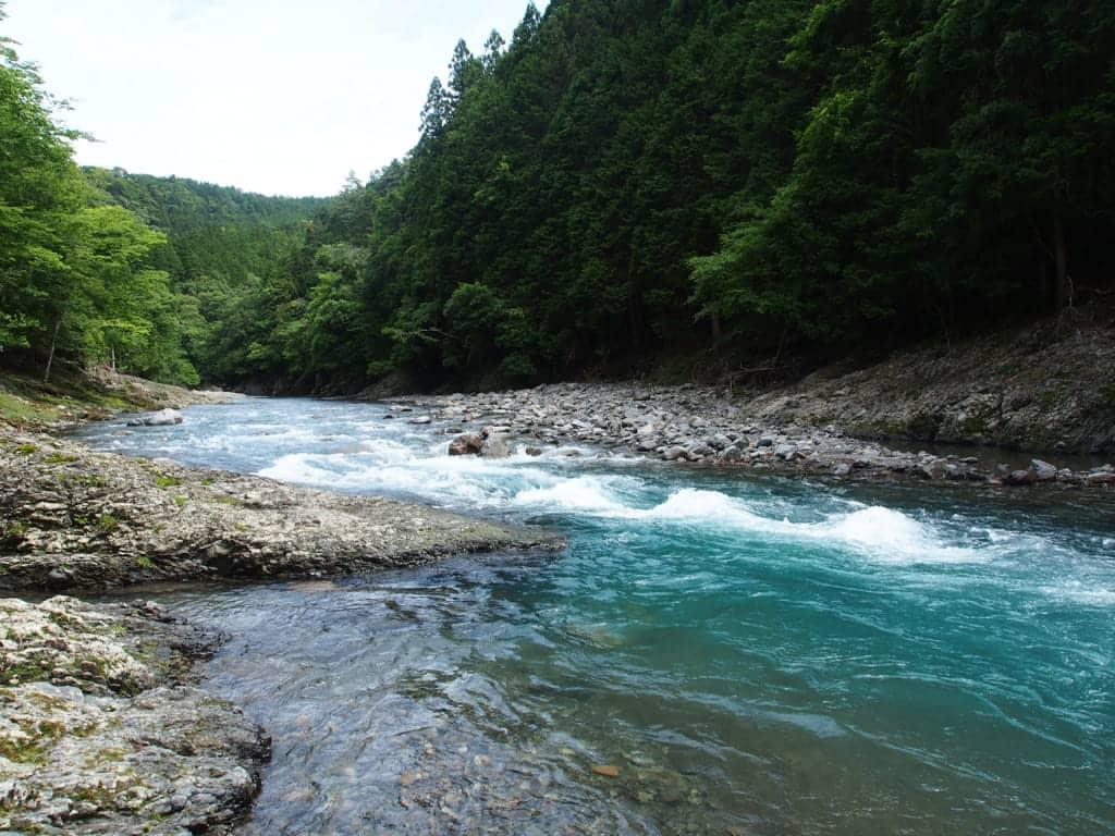 龍神村日高川本流のアマゴ渓流釣り