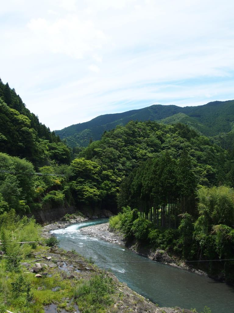 日高川本流アマゴ釣り