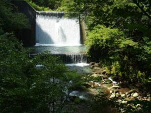 鳥取天神川野添川イワナ渓流釣り