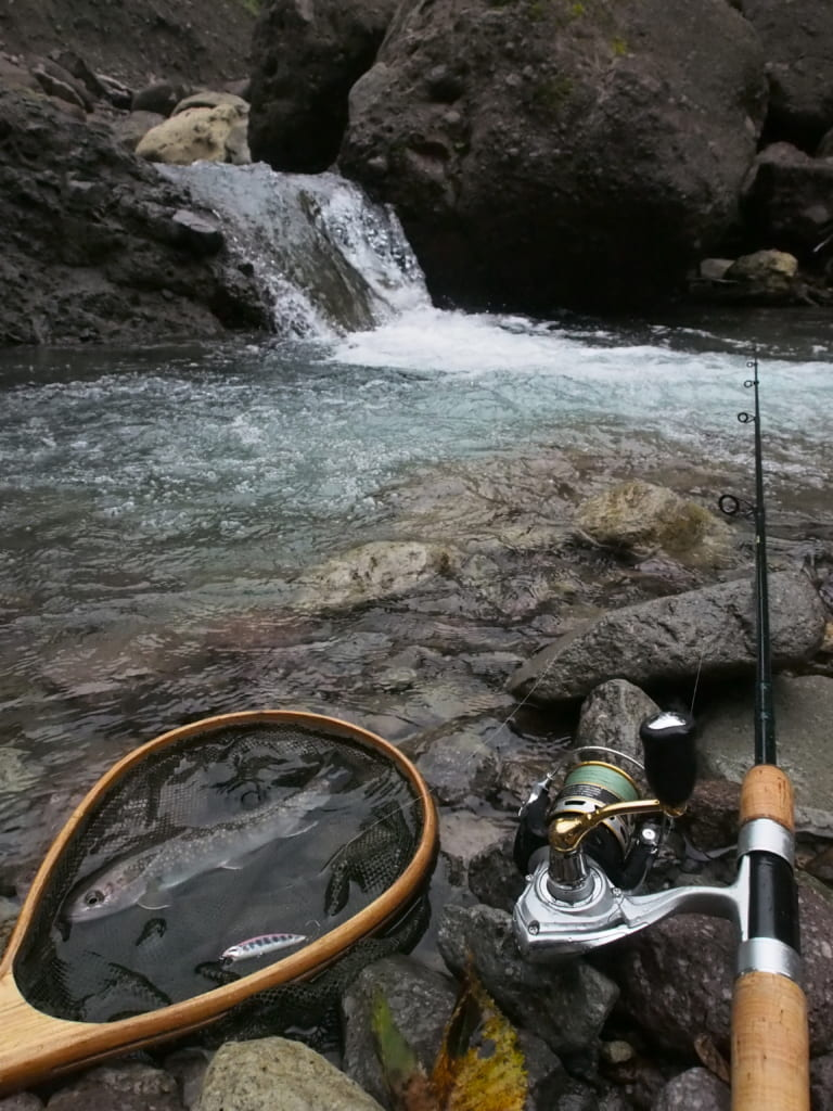 島根鳥取大山イワナ渓流釣り