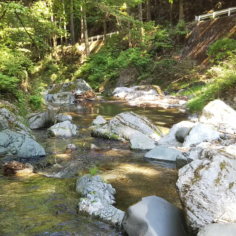 群馬渓流釣り鏑川水系②栗山川