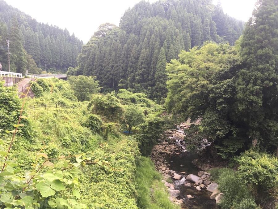 下筌渓流釣り