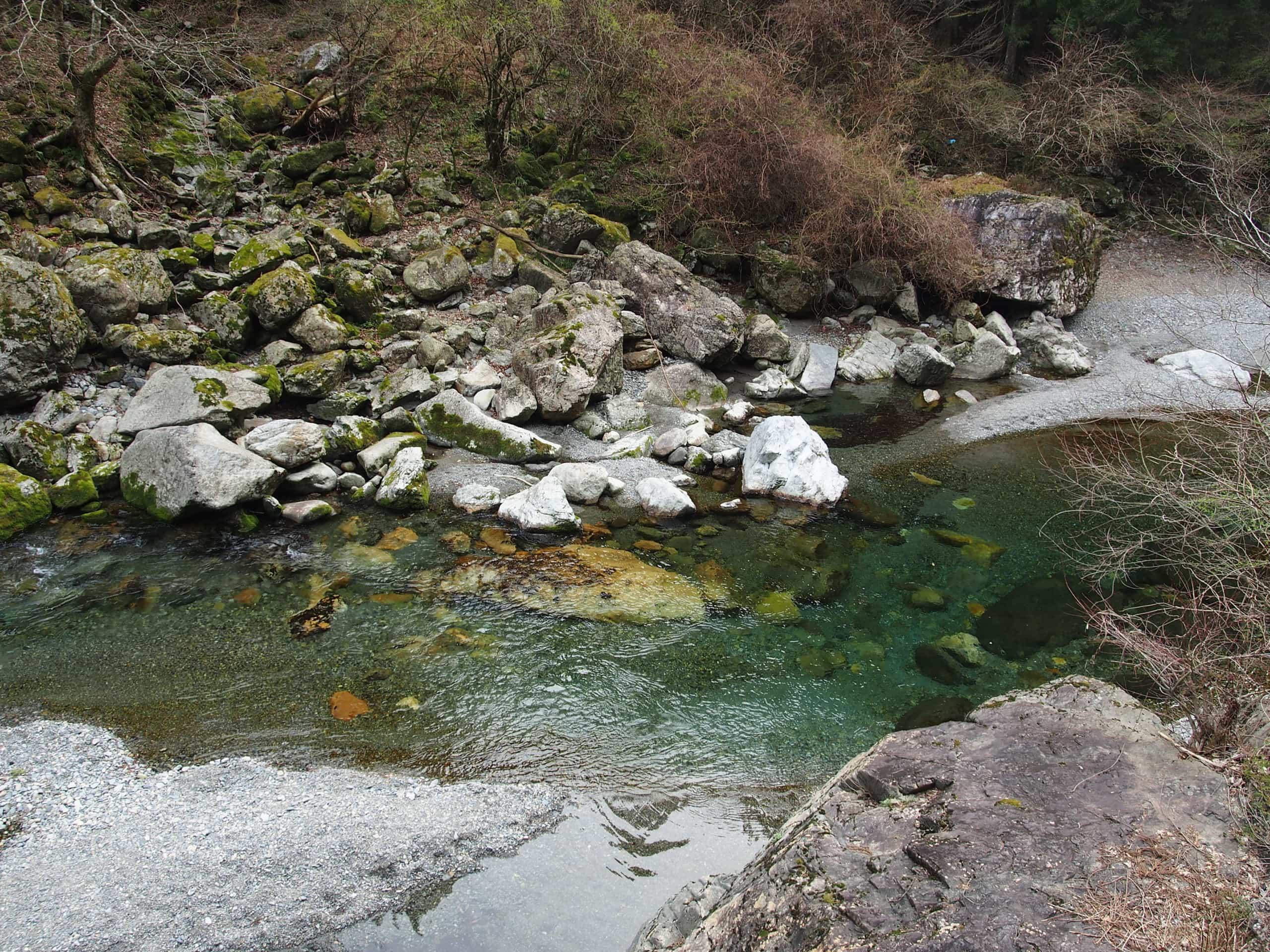 中奥川ヤマメアマゴ渓流釣り
