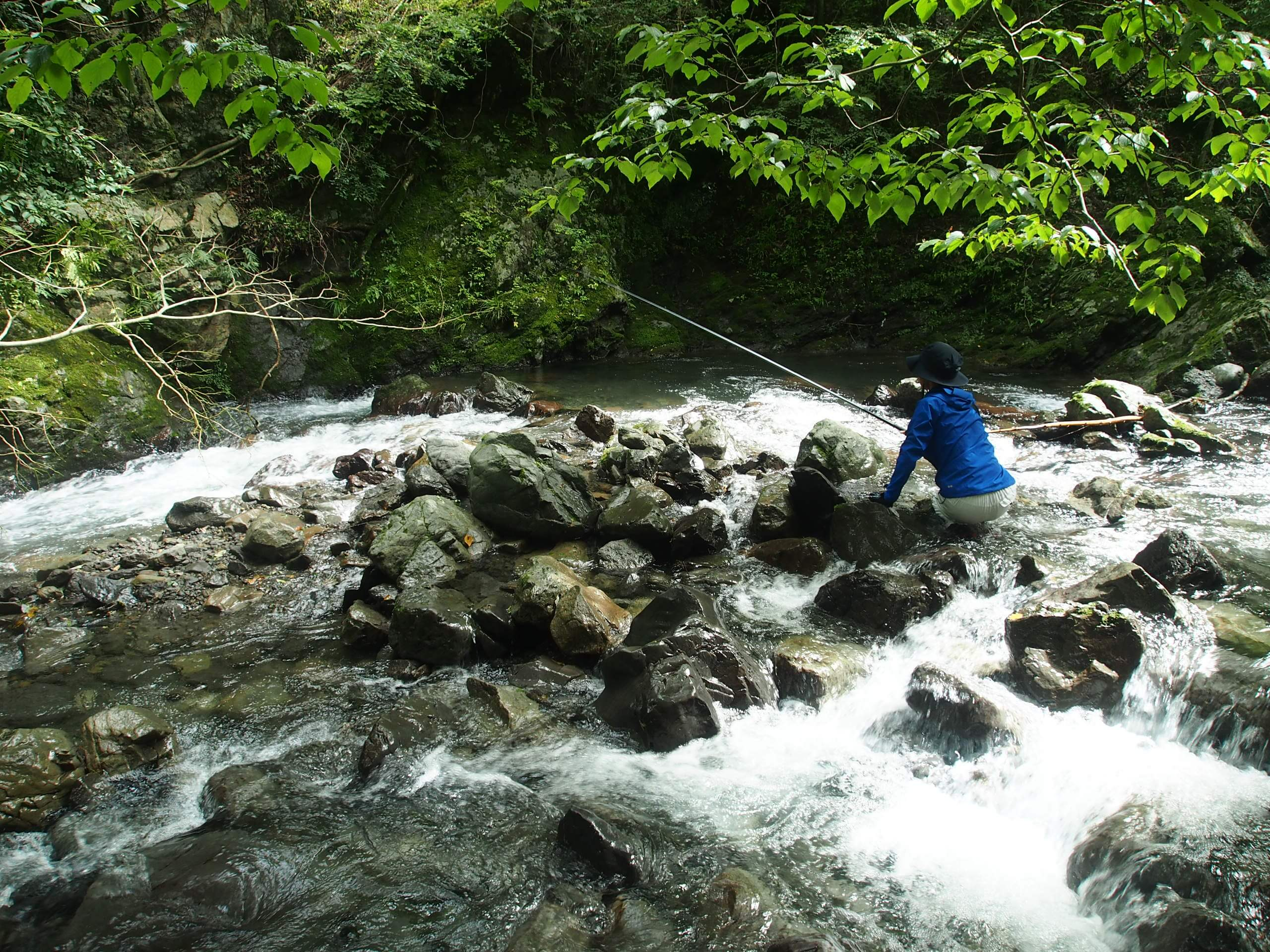 大井川笹間川アマゴ渓流釣り