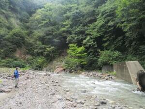 鳥取大山イワナ渓流釣り