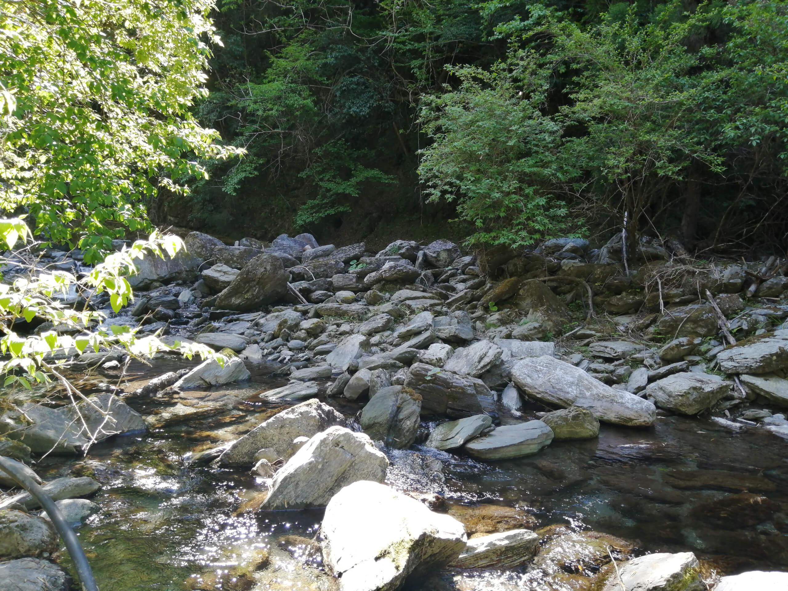 吉野川支流穴吹川アマゴ渓流釣り