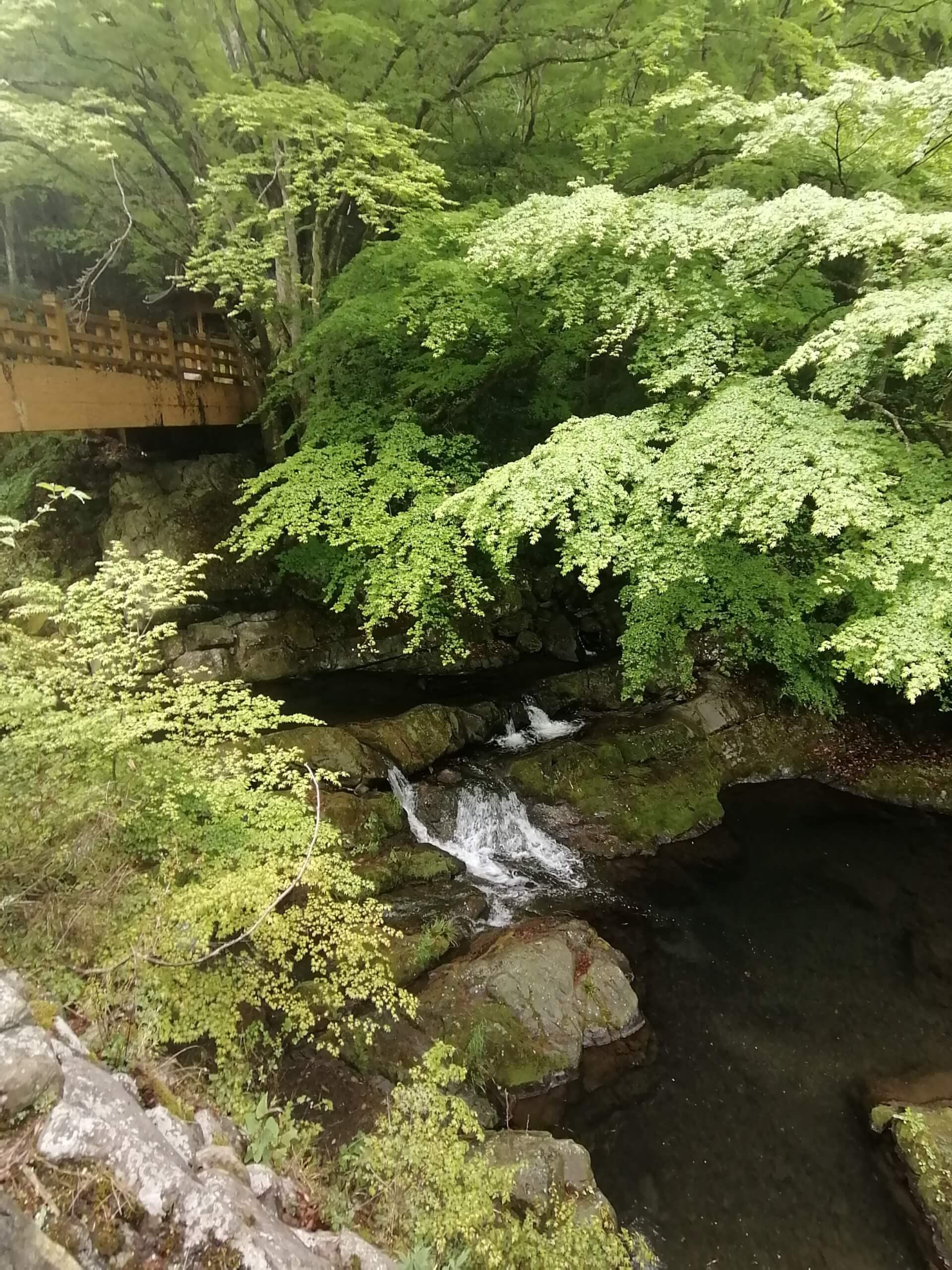 美霞洞温泉公園