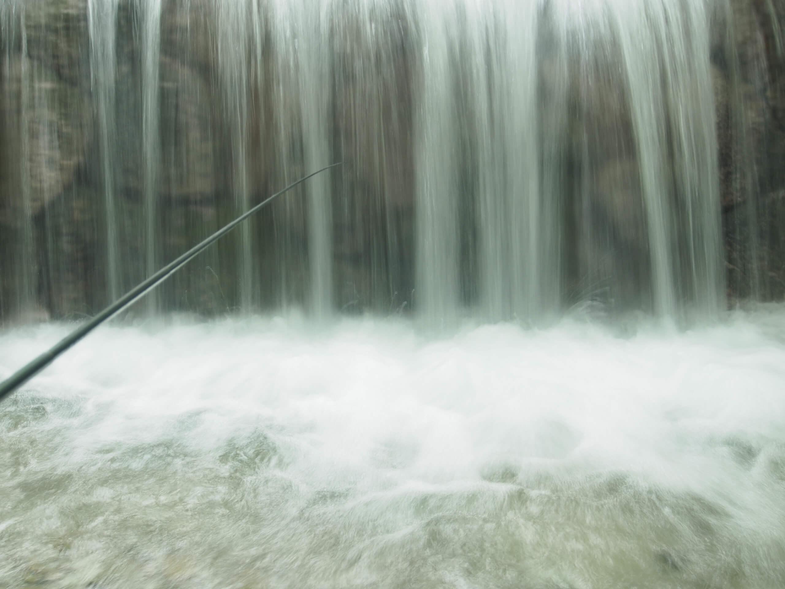 滋賀県西部天然イワナ釣り