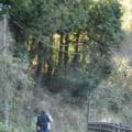 【松山市から40分】'16愛媛渓流渓流釣り1日目中山川支流の滑川・鞍瀬川
