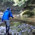 【神戸・西宮から1時間強でヤマメ渓流釣り】市川と小田原川でアマゴ渓流釣り