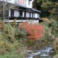 【渓流釣りの時期】ヤマメ・イワナと会うにはどのシーズン・季節が良いの?