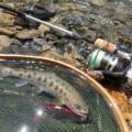 【渓流ルアー用ロッドのおすすめ】トラウトロッド最初に買うなら2,000円の竿で十分!