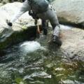 ヤマメ渓流釣り用ウェーディングシューズ