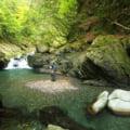 ヤマメ渓流ルアー釣り